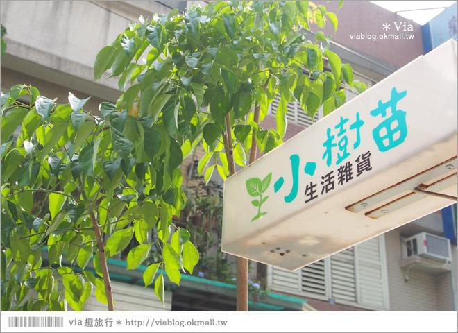 【台中雜貨】小樹苗生活雜貨~一條悠靜小巷弄裡的美好ZAKKA LIFE!4