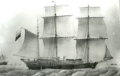 sailing ship, schooner, vehicle, sketch, east indiaman, ship, windjammer, training ship, full-rigged ship, fluyt, mast, carrack, lugger, galeas, barquentine, manila galleon, drawing, sloop-of-war, caravel, tall ship, watercraft, black-and-white, flagship, galleon, barque,