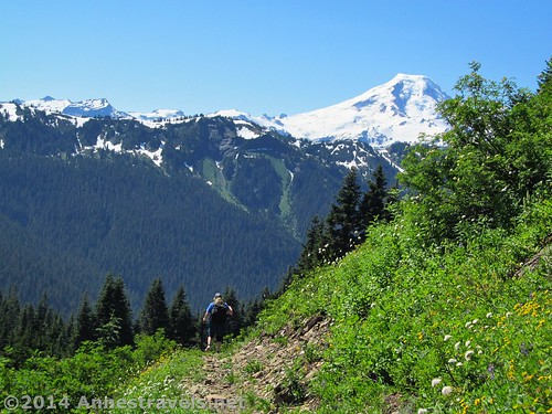 Hiking back to the trailhead with Mt. Baker in the background on the Canyon Ridge Trail, Mt. Baker-Snoqualmie National Forest, Washington