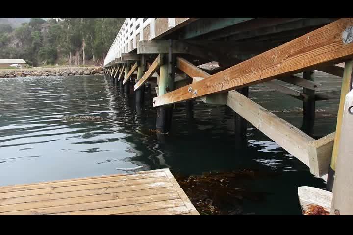 0825 Video of the dock alongside the pier in Prisoners Harbor on Santa Cruz Island