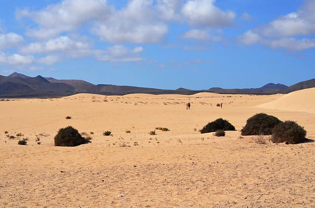 Corralejo dunes, Corralejo, Fuerteventura, Canary Islands