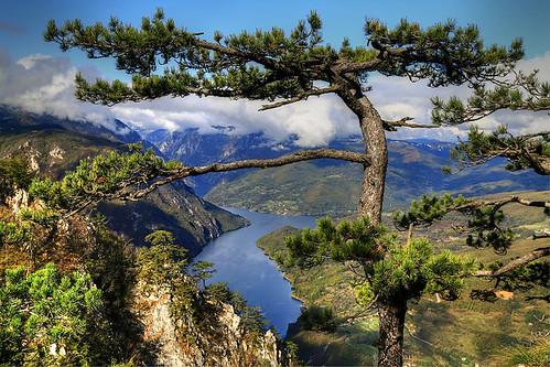 lake river tara serbia reservoir srbija drina zlatibor србија perucac перућац