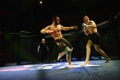 """26 Athleten brillierten bei Stuttgarter """"We love MMA""""-Premiere in der Carl-Benz-Arena"""