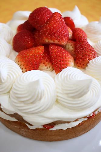 春から夏にかけてのお勧めケーキ