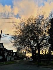 Madrona Good Friday Sunset II
