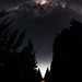 Milky Way between the Pines - Jarrahdale, Western Australia by inefekt69