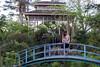Leading to the Pagoda