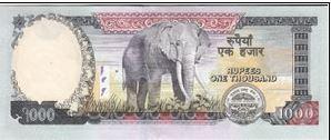 Nepal Elephant banknote
