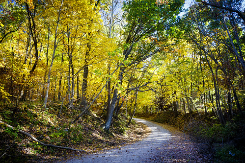 """Notley """"Notley Hawkins"""" 10thavenue http://www.notleyhawkins.com/ """"Missouri Photography"""" """"Notley Hawkins Photography"""" Fall """"Fall Colors"""" October 2014 """"rural missouri"""" rural country """"Copps Chapel Road"""" """"Gravel Road"""" """"Moniteau County Missouri"""""""