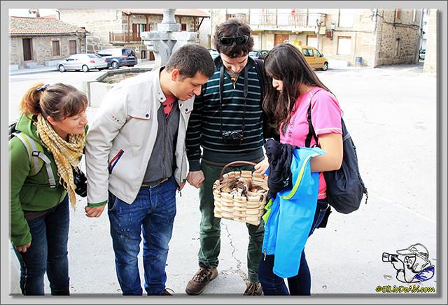 Tuit Quedada Micológica en Gredos (11)