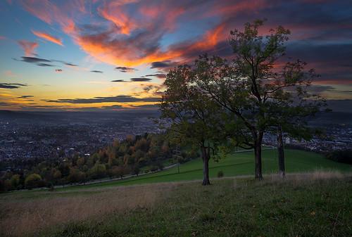 autumn light sunset color tree clouds germany sonnenuntergang sundown walk sony hill hike fe baden spaziergang württemberg reutlingen 2870 achalm