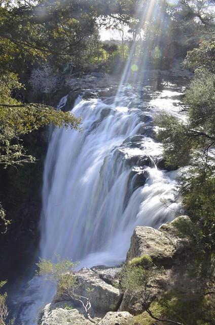Rainbow Falls | Kerikeri