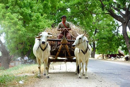 Roads outside of Monywa Myanmar