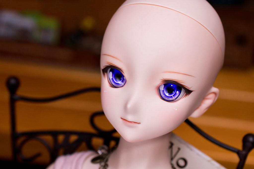 DDH-09(N)hop-head-2