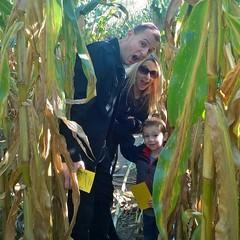 Navigating the Pennsylvania corn maze