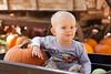 Ryder Pumpkin
