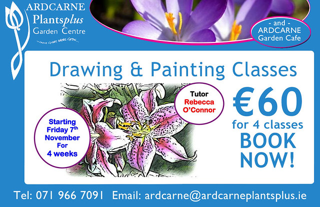 Drawing Classes at Ardcarne Garden Centre