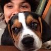 #Selfie con el nuevo bebé de la casa #PeteteVivas #Beagle