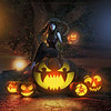 You want pumpkins?.. I got pumpkins