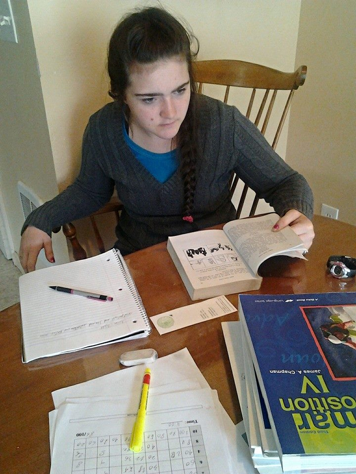 Homeschool Student Studying Various Subjects
