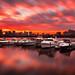 Fiery Sunrise over Charles River Yacht Club and Boston Skyline with Hancock Tower - Cambridge, Massachusetts USA by Greg DuBois Photography
