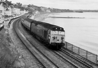 Dawlish Fifty