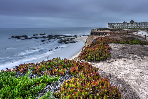 Looking Over a Half Moon Bay Cliff by Geoff Livingston