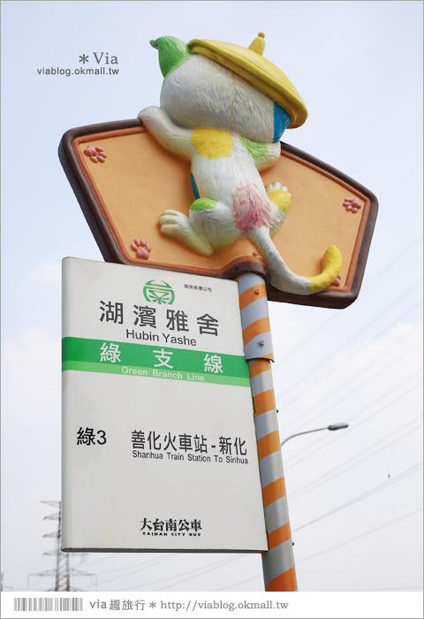 【南科幾米】台南|台積電南科幾米裝置藝術小公園~願望盛開‧許諾之地4