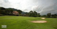 grass, estate, golf, golf course, lawn,