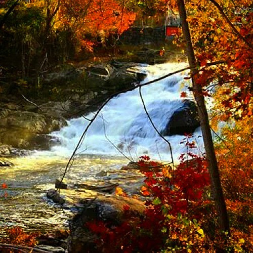 trees fall nature water leaves rural river landscape waterfall rocks massachusetts country fallfoliage uploaded:by=instagram