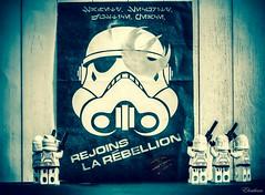 Rebellion....