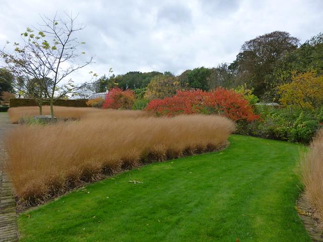 Scampston walled garden day 2 (46)
