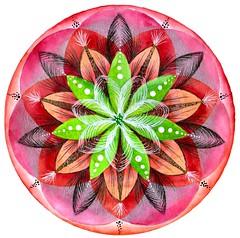 Flor Plateada