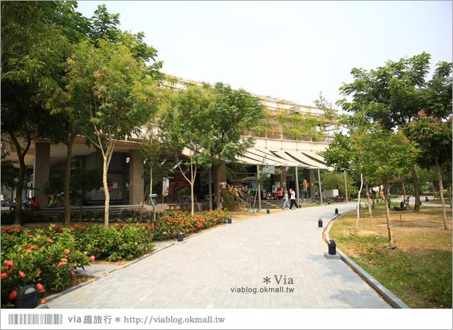 【台南南科景點】樹谷生活科學館~超大的劍齒象化石!有趣又能長知識的博物館!4