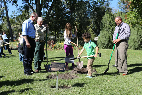 From left to right: Mike Wingfield, the new president of International Union of Forest Research Organizations, U.S. Forest Service Chief Tom Tidwell and Jim Reaves, Forest Service deputy chief, watch as two children prepare to plant a tree. (U.S. Forest Service)