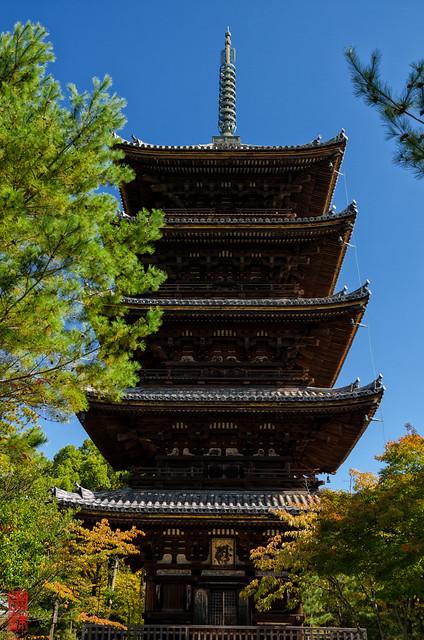 「初秋の塔」 仁和寺 - 京都
