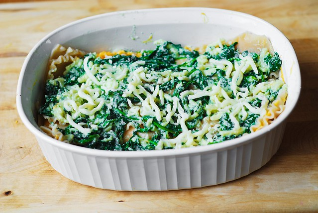 Spread spinach mixture then Mozzarella cheese over lasagna noodles