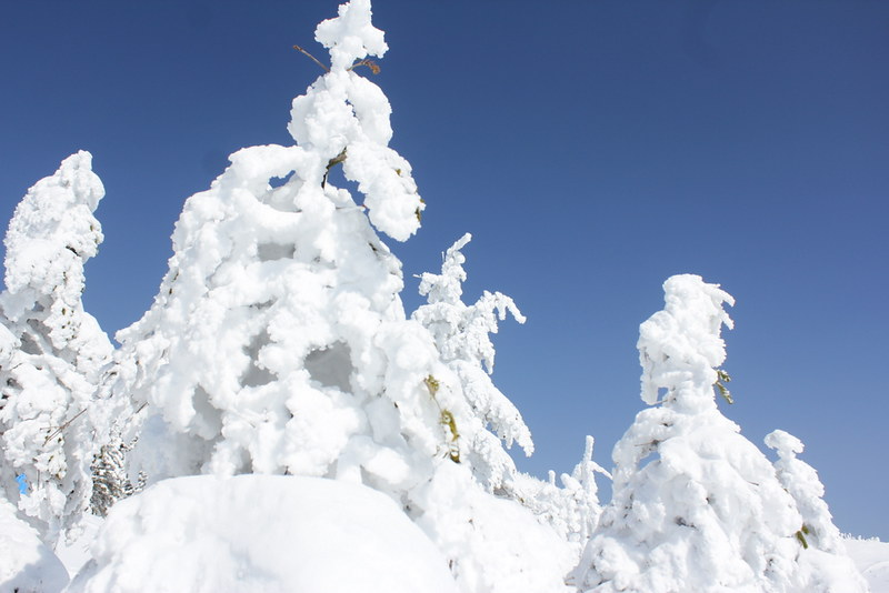 2014-03-09_00016_北横岳
