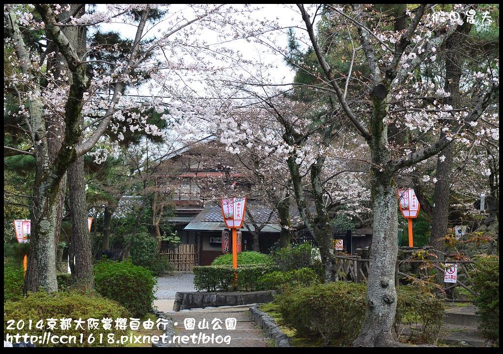 2014京都大阪賞櫻自由行.圓山公園DSC_9923