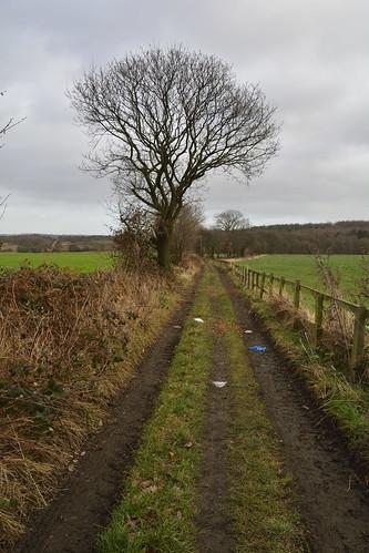 notton royston applehaigh nottonwood nottonwoods nottonpark wakefield westyorkshire yorkshire nottonwoodnaturereserve