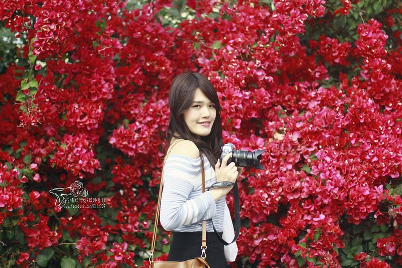泰安大雅 (21)