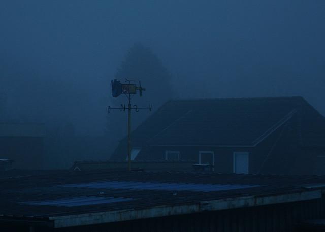Out of my window, Pentax *IST DL, PENTAX-F 70-200mm F4-5.6