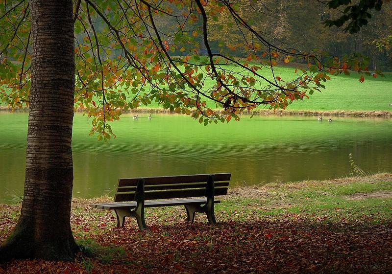 Aquel banco del parque.......