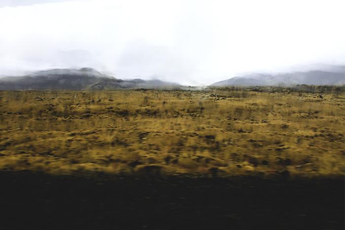 Iceland_Spiegeleule_August2014 015