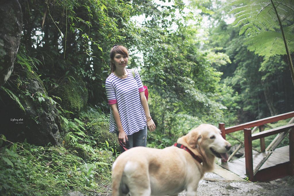 小狗的綠光小學野放日記