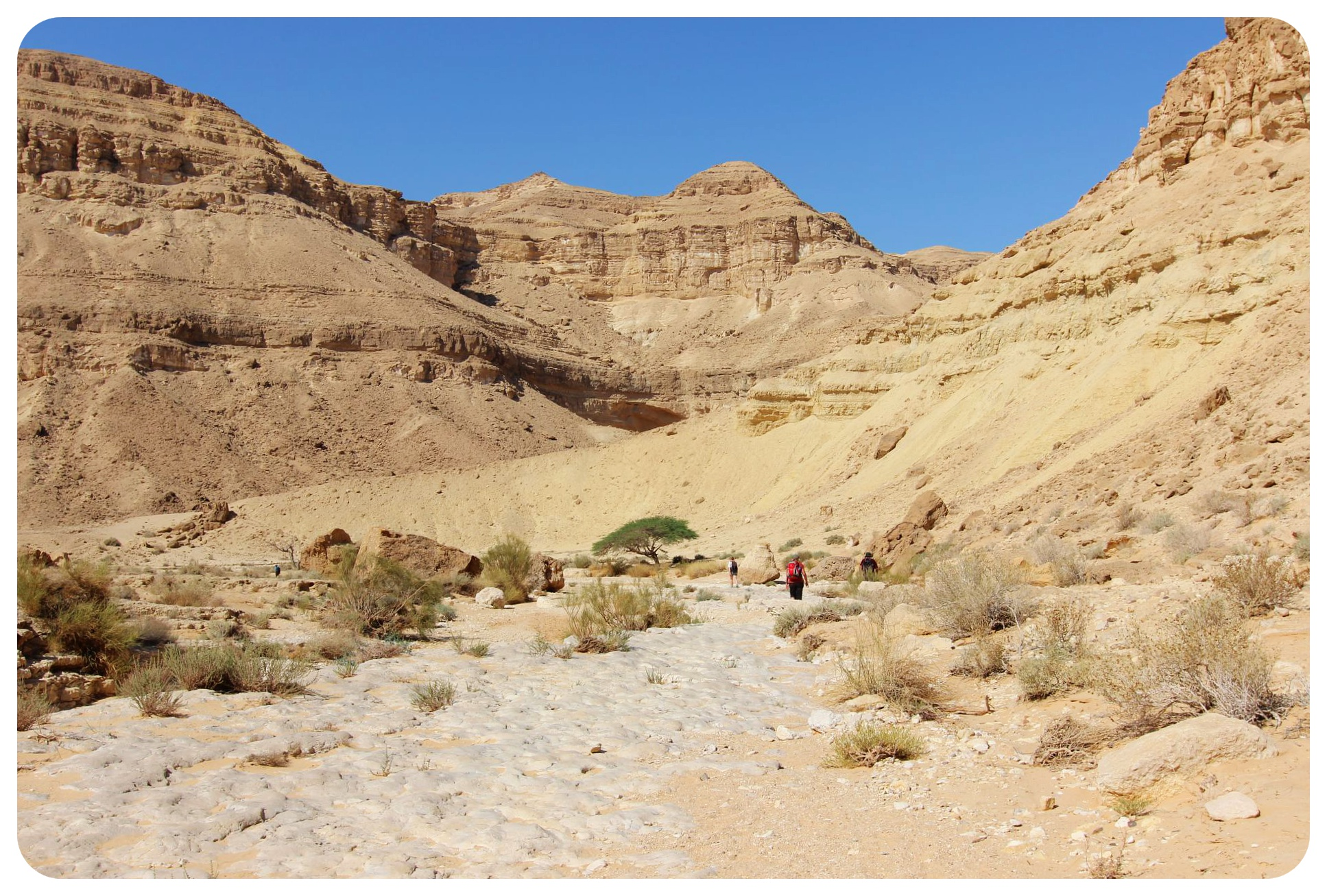 negev desert hike israel national trail