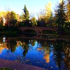 Reflection and fall colors on the CU campus #fall #fallcolor #fallcolors #falltime #autumncolor #autumncolor #autumn #bridge #bridges #reflection #reflections #boulder #Colorado #cuboulder