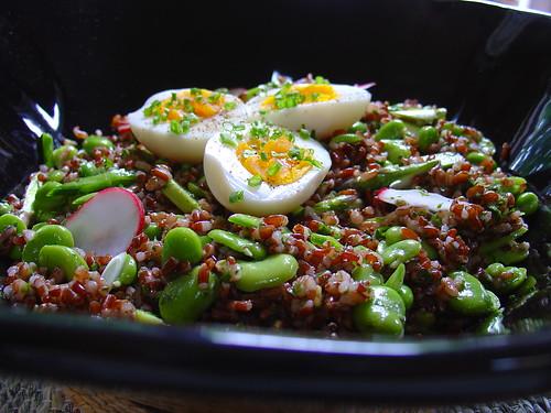 Red Rice Spring Salad