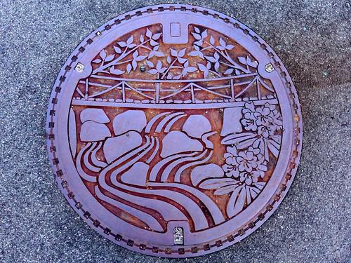 Nita Shimane, manhole cover (島根県仁多町のマンホール)