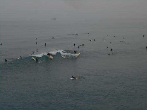 surfing (3)